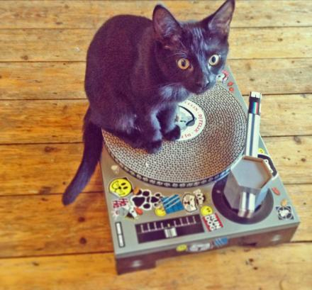 Cat Scratcher DJ Mix Board