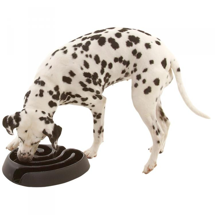 Food Maze Dog Bowl - Slower Eating Dog Maze