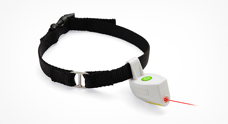 Laser Pointer Dog Collar