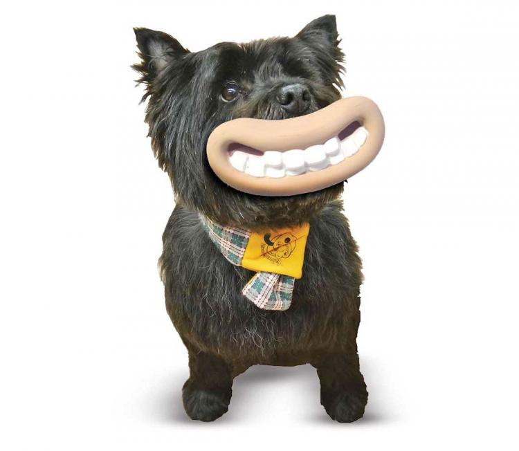 This Dog Toy Makes Your Dog Look Like Wallace And Grommit