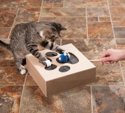 Whack-a-Mouse Cat Toy Box