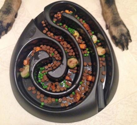 Food Maze Dog Bowl Will Slow Your Dogs Eating