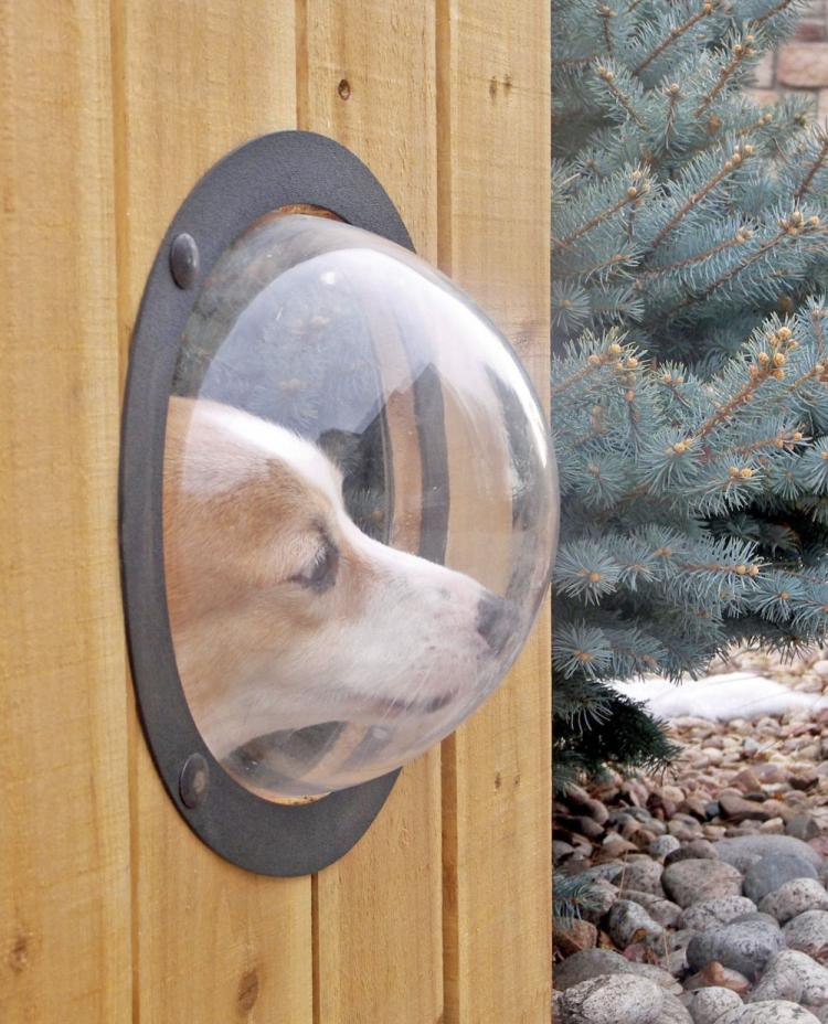 Pet Peek A Bubble Window For Your Dog To See Through The